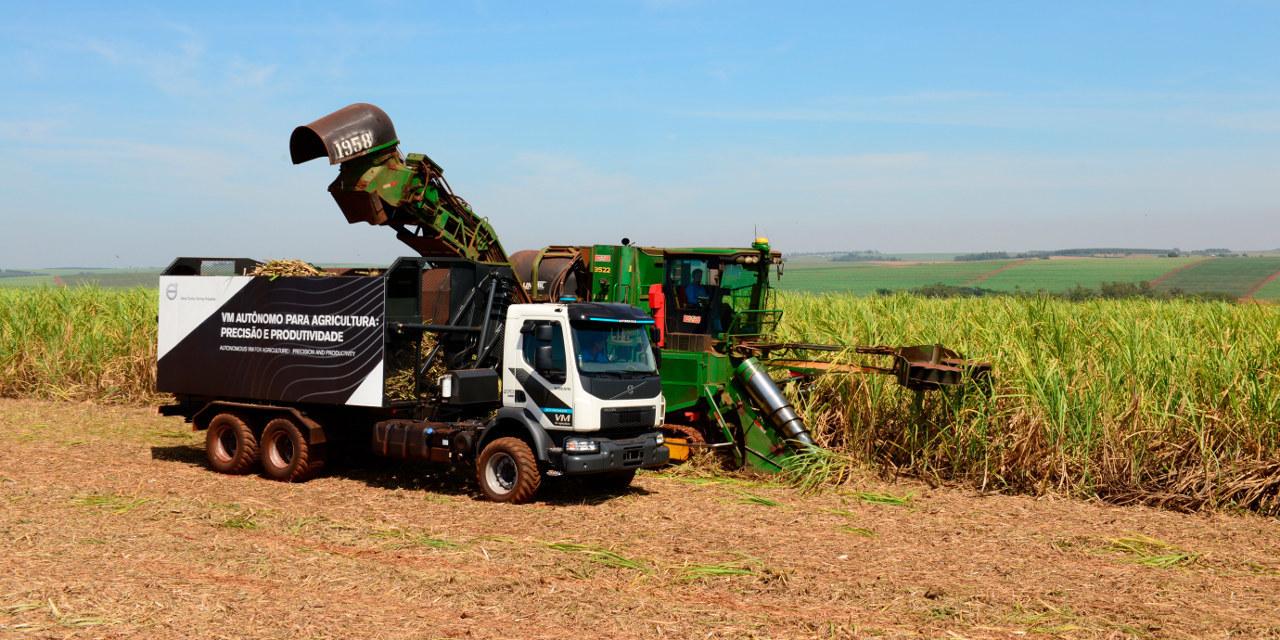 Autonóm cukornád-betakarító